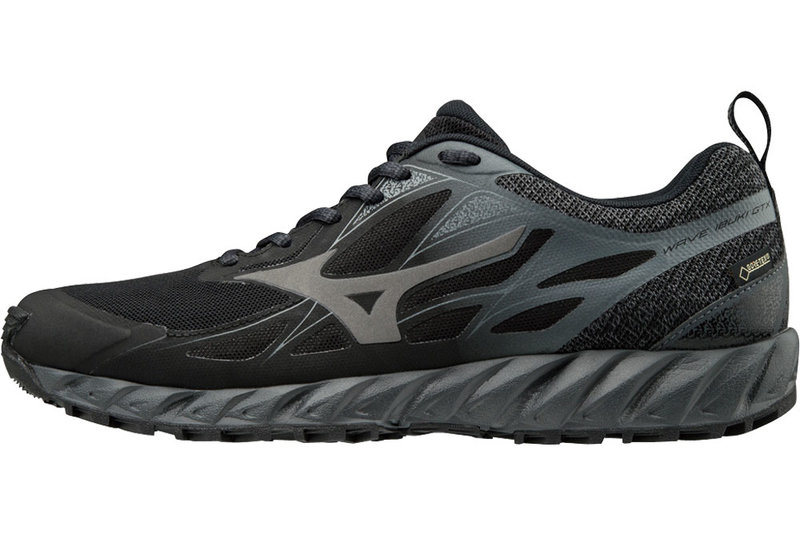 Mizuno Wave Ibuki Gtx Running Shoes