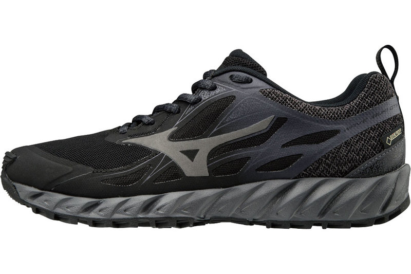 Mizuno Wave Ibuki Gtx Women's Running Shoes