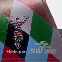Harlequins Sliders